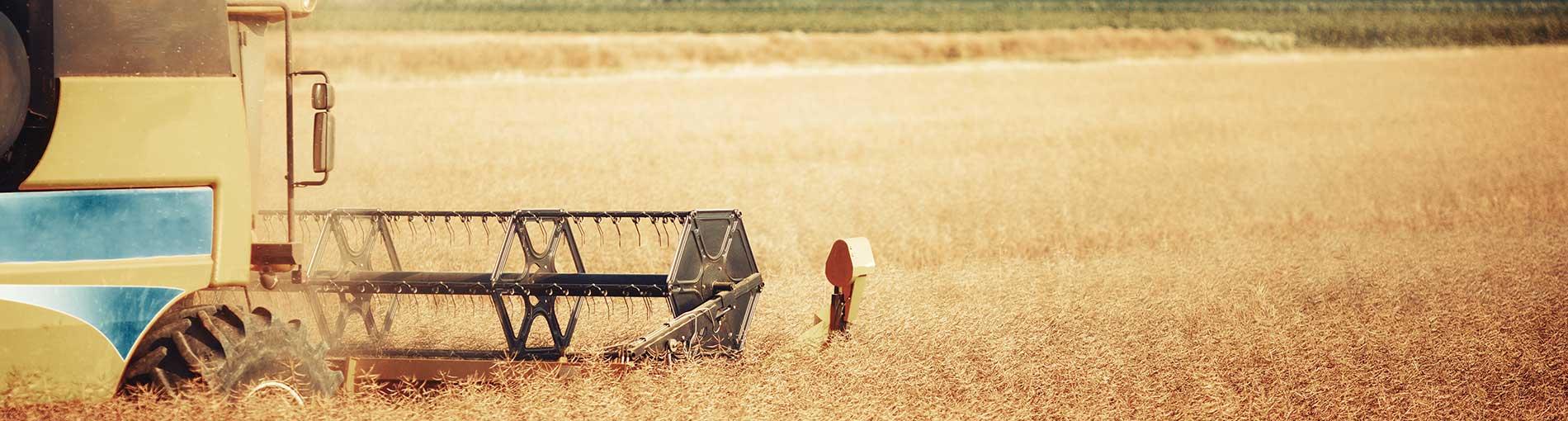 Assicurazioni-Attivita-Agricole